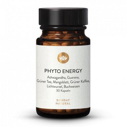 Mélange Vitalisant Phyto-Énergétique