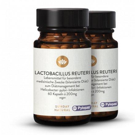 Lactobacillus Reuteri Pylopass® Forte Mono + B12 MH3A-D® Gélules