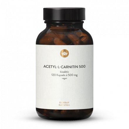 Acétyl-l-Carnitine 500 en Gélules