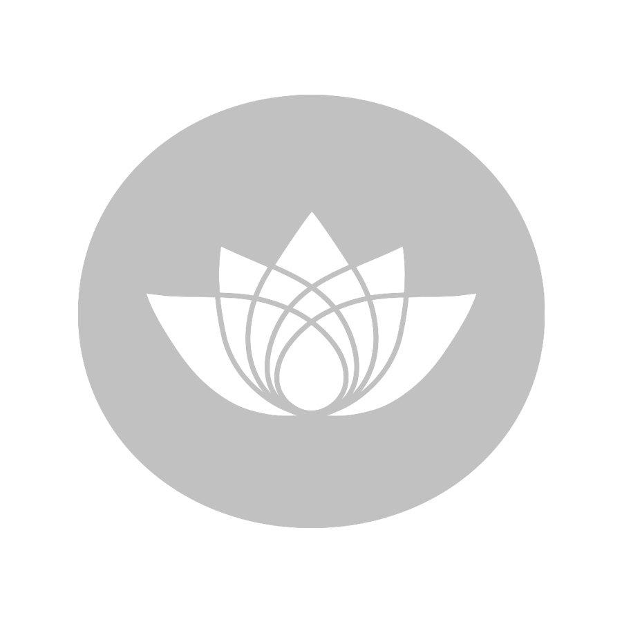 La vue du jardin de thé de Guranse, donnant sur l'Himalaya